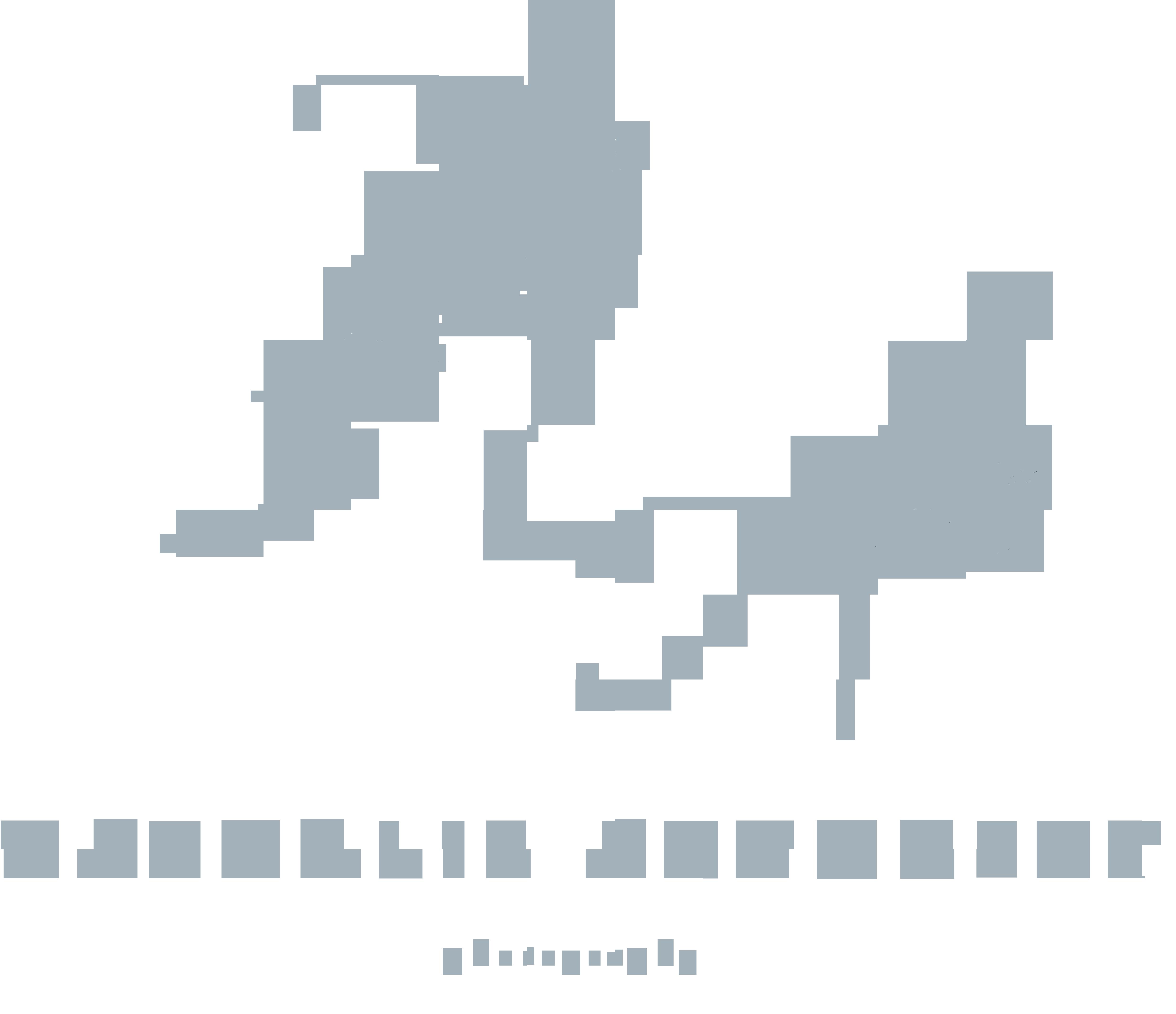 Nathalie Arnoczky Photography